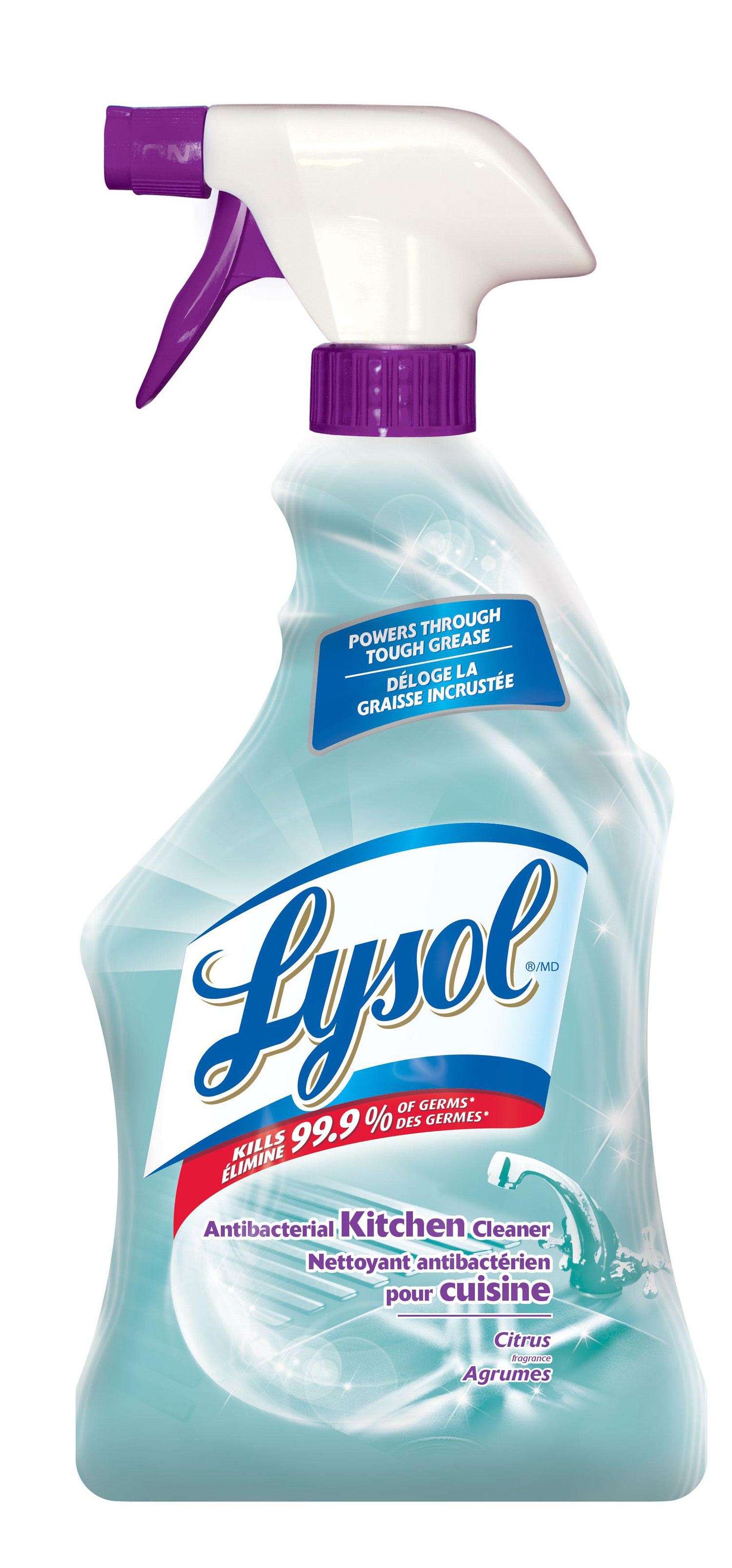 LYSOL Antibacterial Kitchen Cleaner  Citrus Canada Discontinued Photo